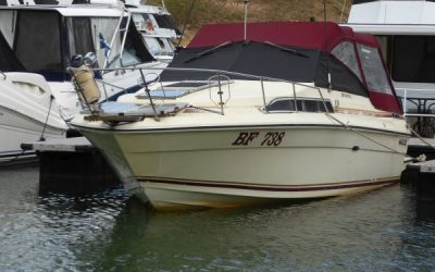 SEA MIST 111 Sea Ray Sundancer 270